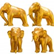 Stock Photo: Golden elephant