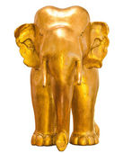 Golden elephant — Stock Photo