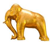 Elefante de oro — Foto de Stock