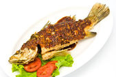 Fried snapper with chili sauce — ストック写真