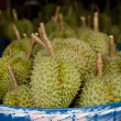 Fresh durians in market — Stock Photo