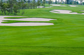 Landscape of golf cours — Stock Photo