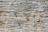 Old wood texture — Foto Stock