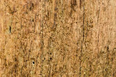 Side view of old wood texture — Stock Photo