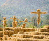 Scarecrows stand together in the garden — Stock Photo