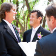 Gay Wedding - Together for Life — Stock Photo #13436070
