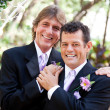 Handsome Gay Couple on Wedding Day — Stock Photo #13436072