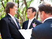 Gay Wedding - Together for Life — Stock Photo