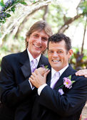 Handsome Gay Couple on Wedding Day — Stok fotoğraf