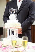 Groom at Wedding Reception — Stock Photo
