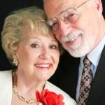 Elegant Senior Couple with Rose — Stock Photo