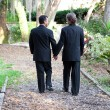 Gay Wedding Couple Walking on Garden Path — Stock Photo #18616995