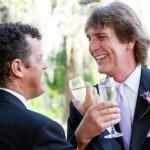 Gay Couple Toast Their Marriage — Stock Photo