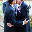 Gay Wedding Kiss — Stock Photo