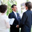 Stock Photo: Gay Wedding - Female Minister
