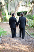 Gay Wedding Couple Walking on Garden Path — Stok fotoğraf