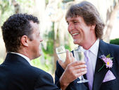 Gay Couple Toast Their Marriage — Stockfoto