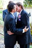 Gay Wedding Kiss — Stock Photo