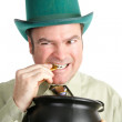 Leprechaun with His St Patricks Day Gold — Stock Photo #19671915