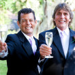 Stok fotoğraf: Gay Wedding Couple - Champagne Toast