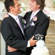 Gay Couple - Committed For Life — Stock Photo #22103073