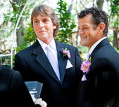 Gay Couple Says Wedding Vows — Stok fotoğraf
