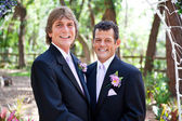 Handsome Gay Wedding Couple — Stock Photo