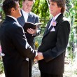 Stock Photo: Gay Wedding in the Park