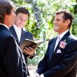 Stok fotoğraf: Gay Couple Getting Married