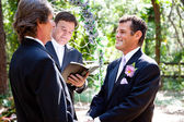 Gay Couple Getting Married — Stock Photo