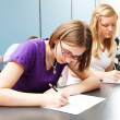 Stock Photo: High School Academic Testing