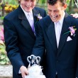 Gay Marriage - Cutting Cake Together — Stockfoto