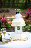 Gay Wedding Cake in Garden — Stock Photo
