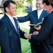 Gay Marriage Ceremony - Rings — Stock Photo #32271549