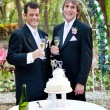 Stock Photo: Gay Male Couple at Wedding Reception