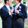 Stock Photo: Gay Wedding Couple - Champagne Toast