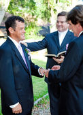 Gay Marriage Ceremony - Rings — Stock Photo
