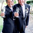 Stock Photo: Toasting Gay Marriage