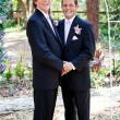 Stock Photo: Gay Wedding Couple - In Love