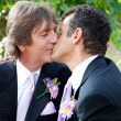 Stock Photo: You May Kiss Groom