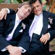 Stock Photo: Portrait of Loving Gay Married Couple