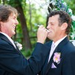 Stock Photo: Gay Wedding - Let Him Eat Cake
