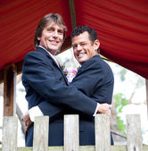 Handsome Newlywed Grooms in the Park — Stockfoto