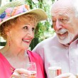 Senior Couple - Outdoor Toast — Stock Photo #45367075