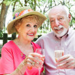 Senior Couple Drinks Champagne — Stock Photo #45367077