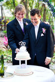 Grooms Cut the Wedding Cake — Stock Photo
