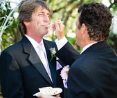 Feeding Wedding Cake — Stock Photo