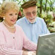 Seniors Enjoy Computer — Stock Photo #6596788