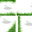 Stock Photo: Isolated green grass with copyspace