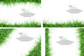 Isolierte grüne gras mit exemplar — Stockfoto